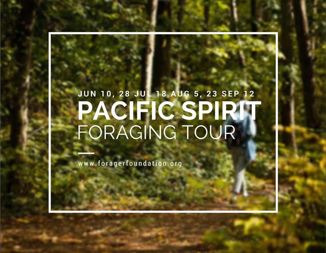 Wild Foraging Tour at Pacific Spirit Park