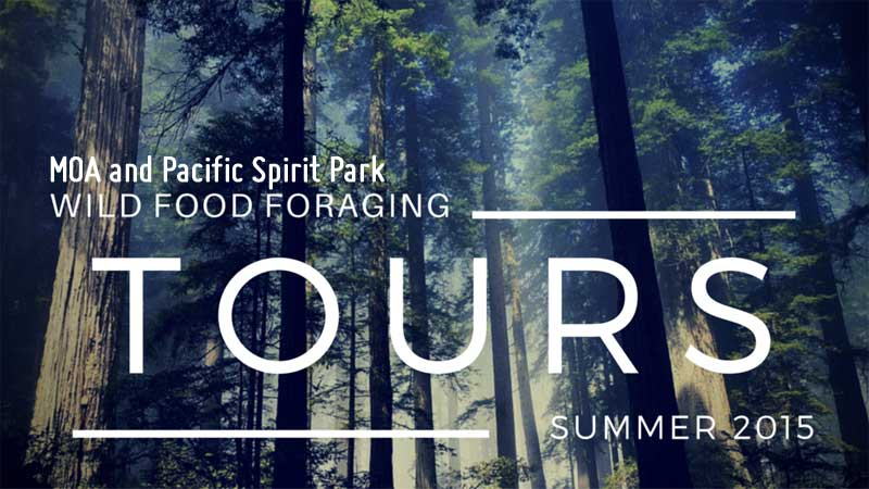 Pacific Spirit Park & MOA Tour