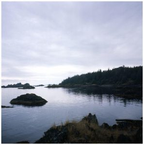 Nature scene showing water, small land masses covered in rocks and trees, and blue/grey cloudy skies.